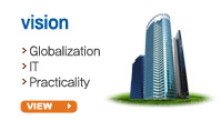 vision  ▶ Globali zation ▶ IT ▶ Practicality view